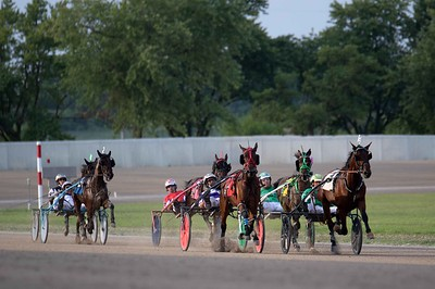 Triumphant Prince, Danny Boy Hanover, Burrow, Fanciful Invention, Baby Yoda, Blank Space As
