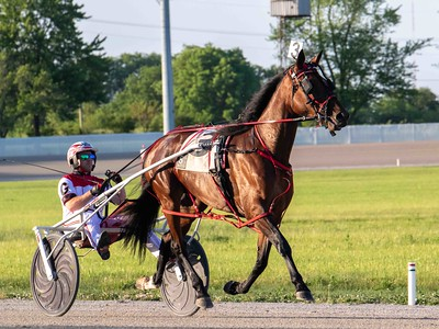 Coral Reef Hanover