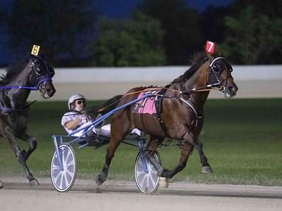 Its A Horse, Cantab Lindy
