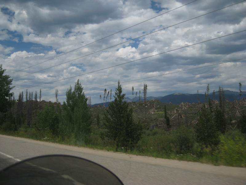 Pine Beetle devestation - Ride from Nederland- Berthoud Pass - Rocky Mountain Nat'l Park - Ned ride