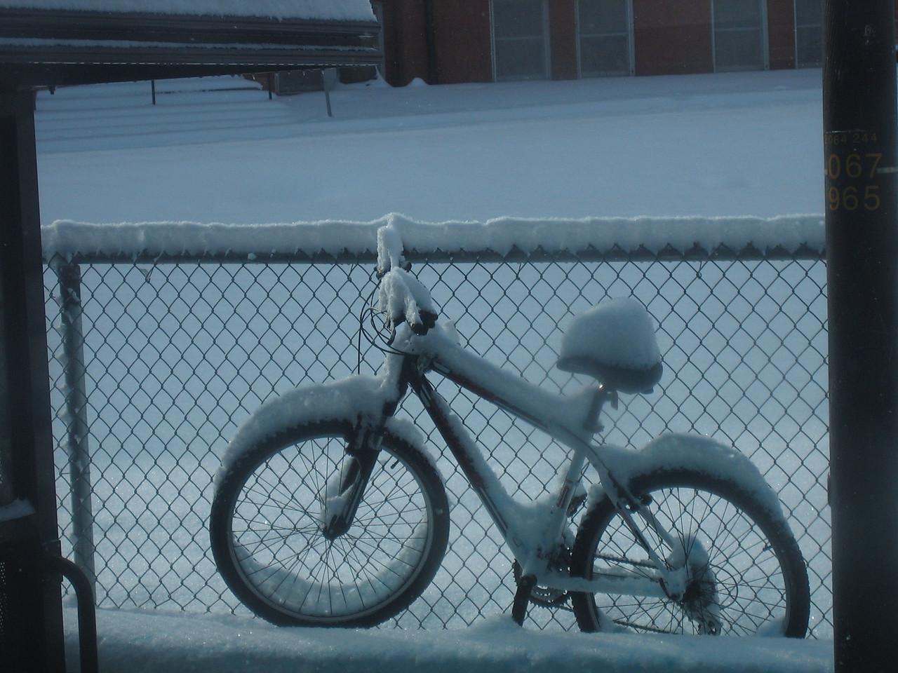 Snow, early December 2007