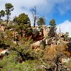Flinders Ranges, SA - Habitat