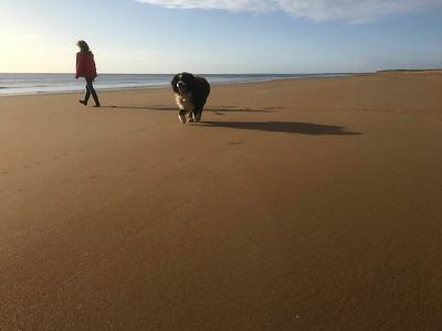 11 brora beach (14)