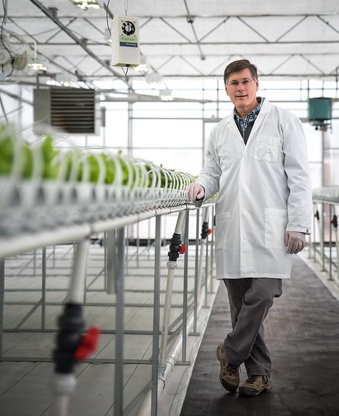 18. Growing Green In High Tech