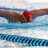 APS Swimming Final 2008 Scotch College Photographer Andrew Murdoch