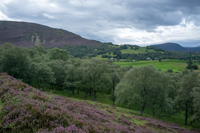 More hills and heather
