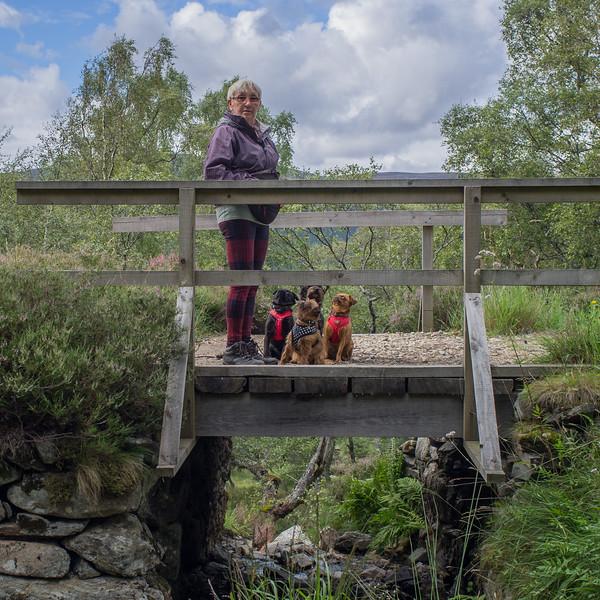 Sue and dogs on bridge