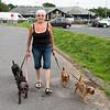 Sue, being taken for a walk
