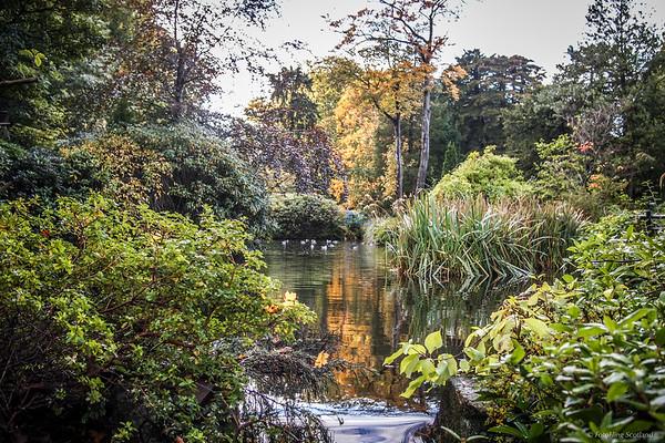 Johnston Gardens, Aberdeen