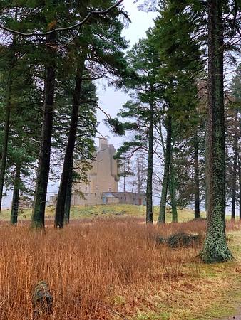 A castle through the trees