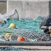 Fishing Net Repairer