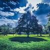 Fyvie Castle Garden