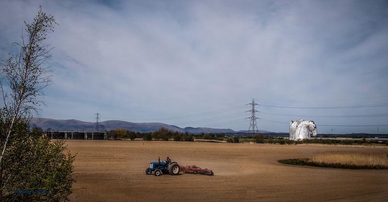 Kelpies and Farmland