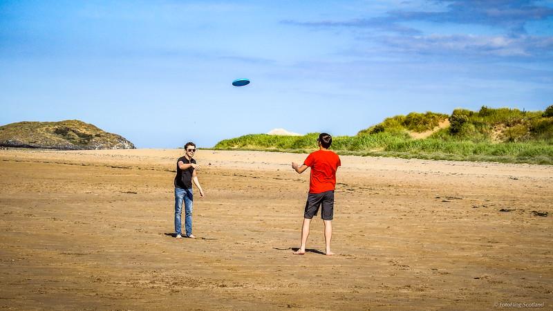 The Frisbee Boys