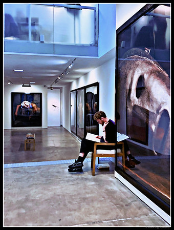 Man in the Gallery
