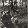 Reading by a stream