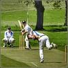Saturday Afternoon Cricket