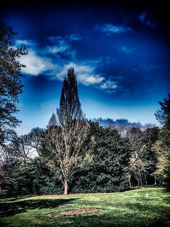 Botanical Garden, Edinburgh