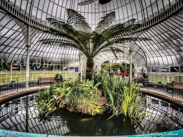 Botanic Gardens, Glasgow - Kibble Palace