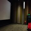 Birks Cinema, Aberfeldy (Interior)