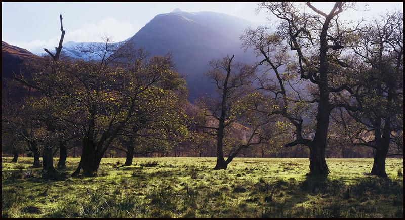 Glen Nevis, Late Autumn