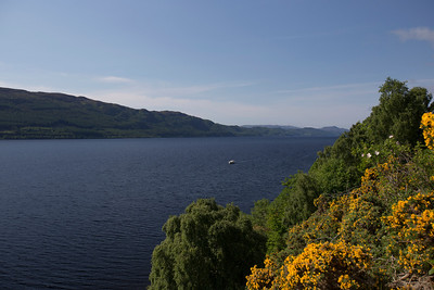 Loch Ness.  Near town of Abriachan, Highlands Council, Scotland.