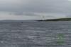 Northlink Ferry - 20
