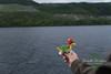 Loch Ness, Fort Augustus - 16