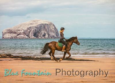 Seacliff Beach Ride June 2018