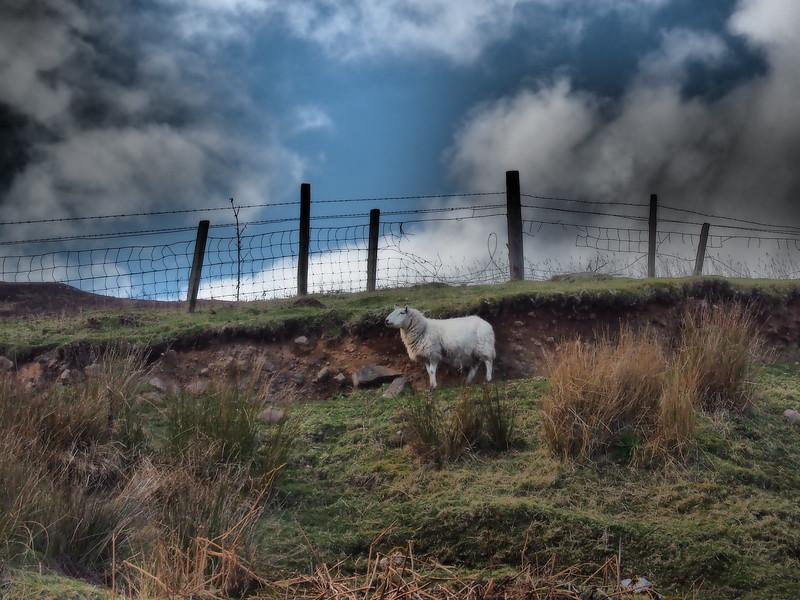 Glen Loth, Scotland