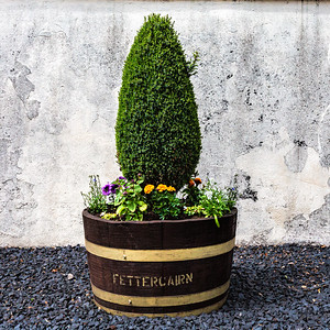 Fettercairn Distillery, Flower Pot