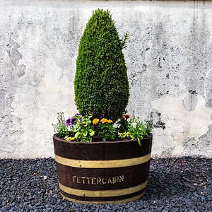 Fettercairn Distillery, Flower Pot