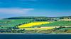 The Cromarty Firth shoreline near Invergordon, Sootland, United Kingdom, Europe.