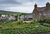 A small vegetable garden in Kikrkwall, Orkney, Scotland, United Kingdom, Europe.