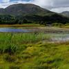 Glennfinnan Wetlands