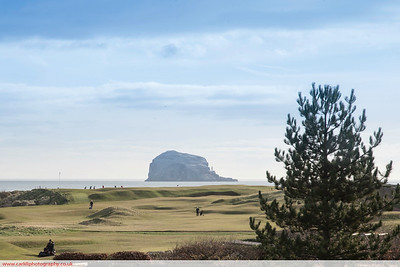 Bass rock from North Berwick