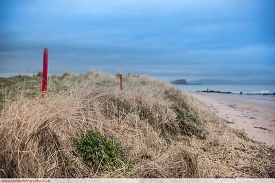 North Berwick sand dunes