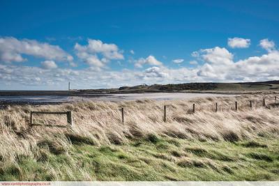 Dunes at Dunbar