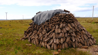 Drying peat for smoking barley
