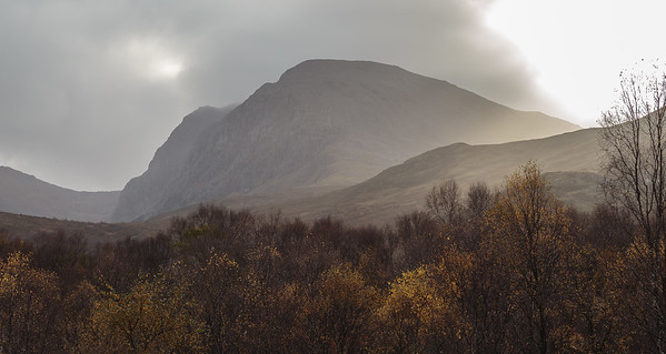 Ben Nevis from autumn treeline