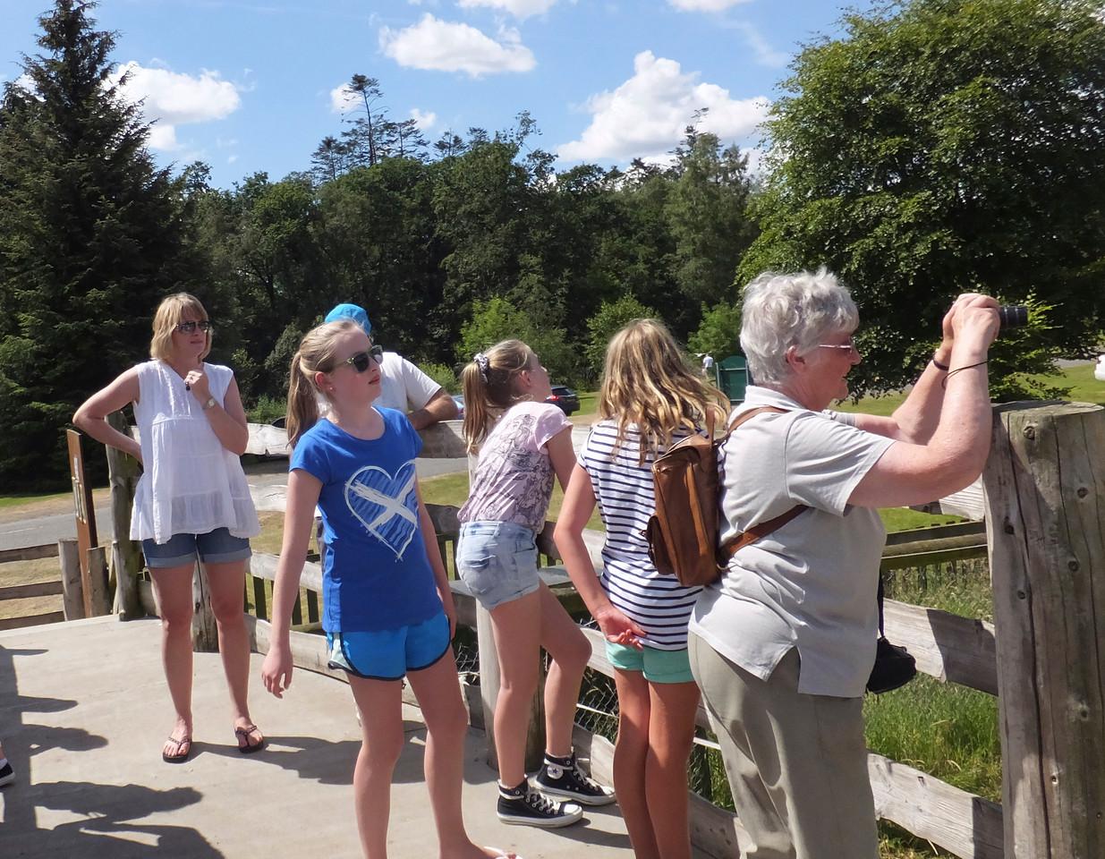 Blair Drummond Safari Park July 2014