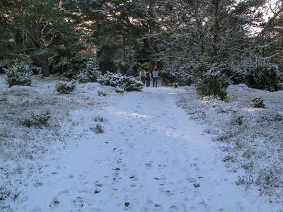 Aviemore (Jan 2009)