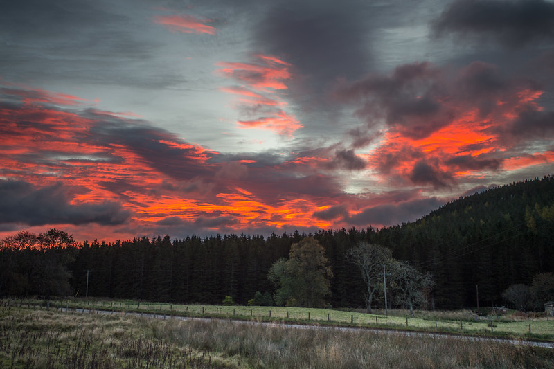 Red Sky in the Morning.............?