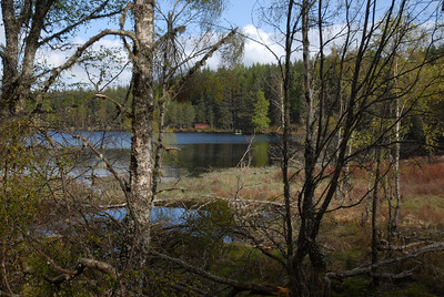 15. May 2010 Aigas Loch (Loch Cuil Na Caillich)