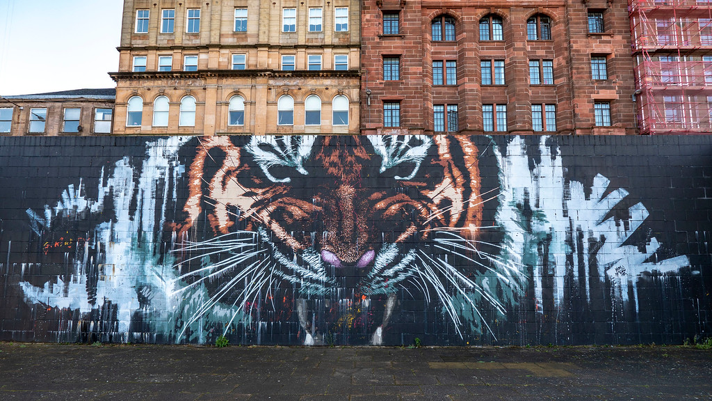 Glasgow Street Art - Tiger Mural