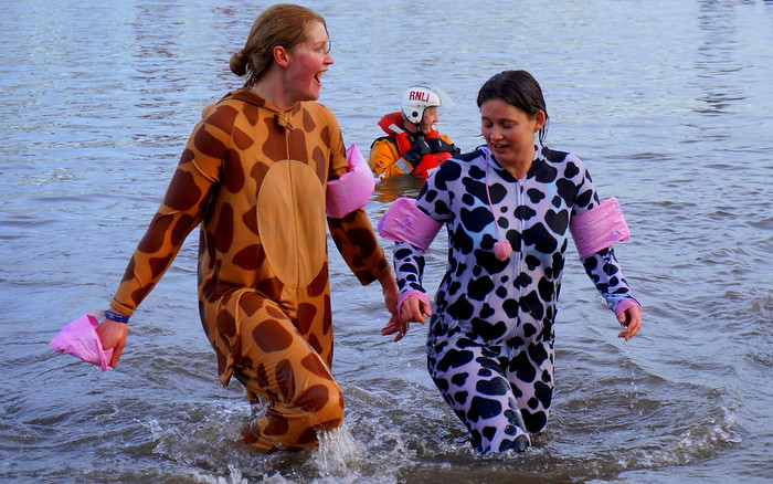 Cow and giraffe at the Loony Dook.
