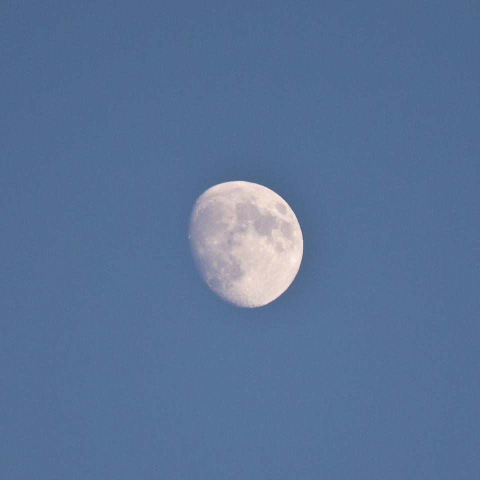 Hand held moon.