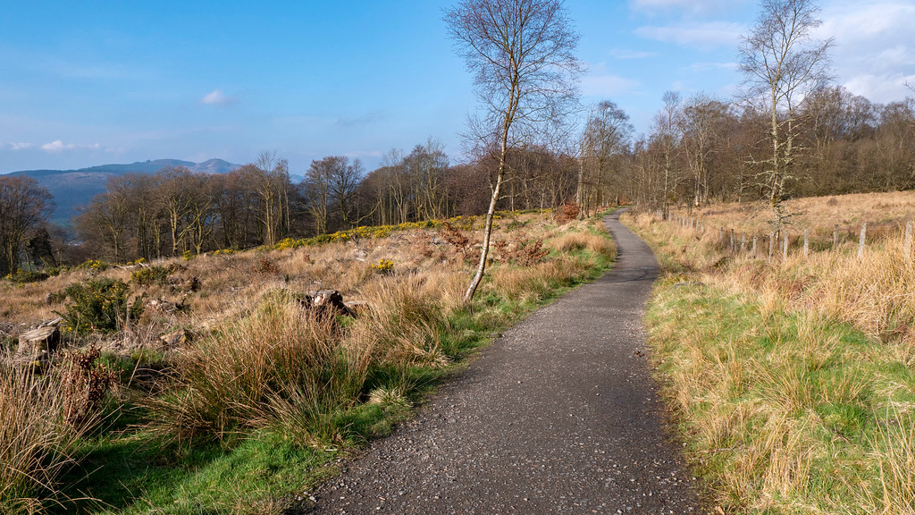 The walk towards Bracklinn Falls in Callander, Scotland