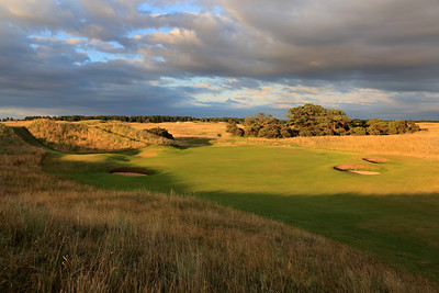 Muirfield_03SideGreen_3965