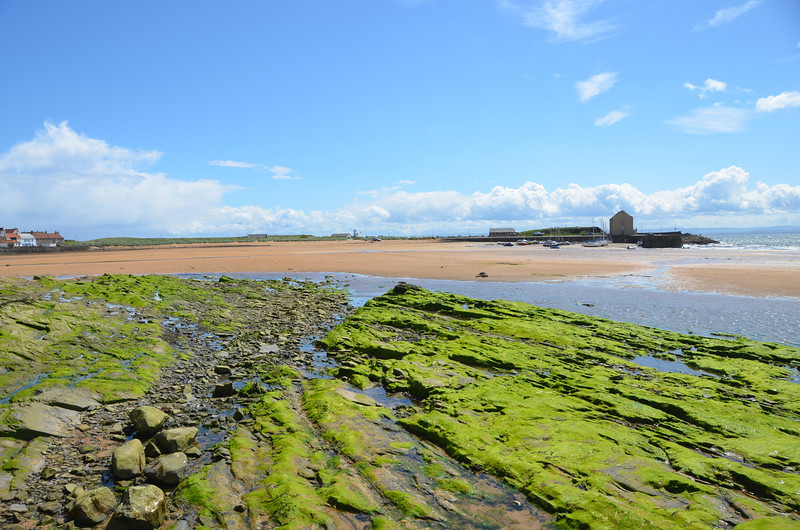 Tide is out at Elie as we head for the Ship Inn across the beach